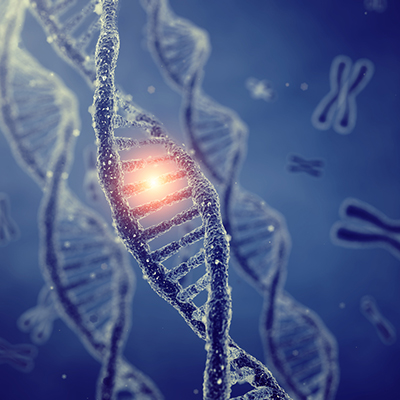 Lo zinco può ridurre i danni al DNA