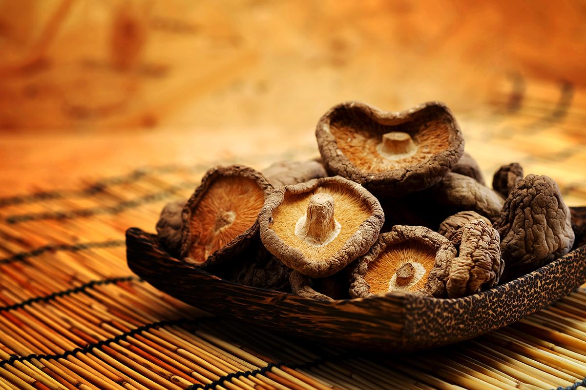 Lentinula, un fungo contro l'aterosclerosi